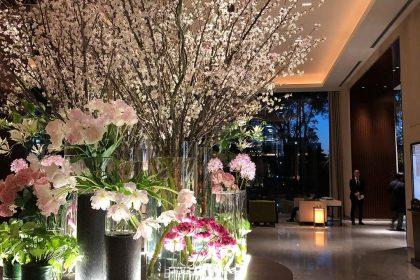 春 パレスホテル 桜